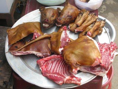 V Asii je konzumace psího masa poměrně častá a oblíbená.